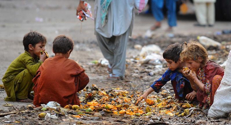Дети Индии и вегетарианство фото