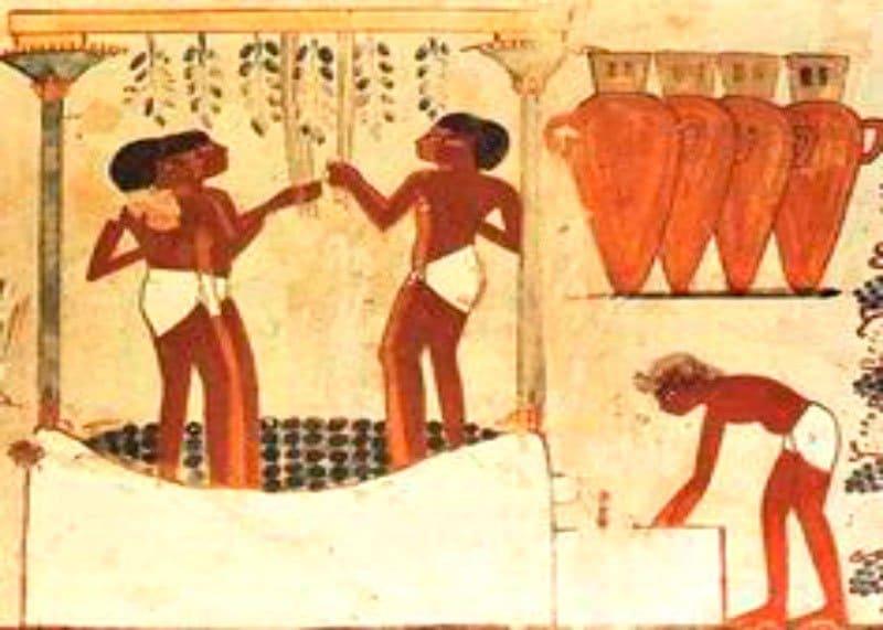 Египет и вино фото