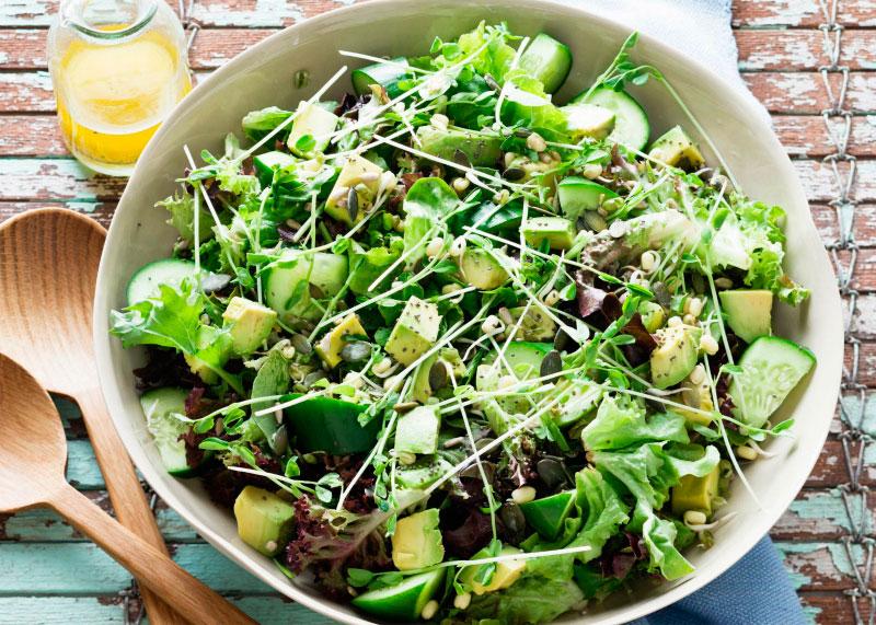 Виды зеленых салатов фото