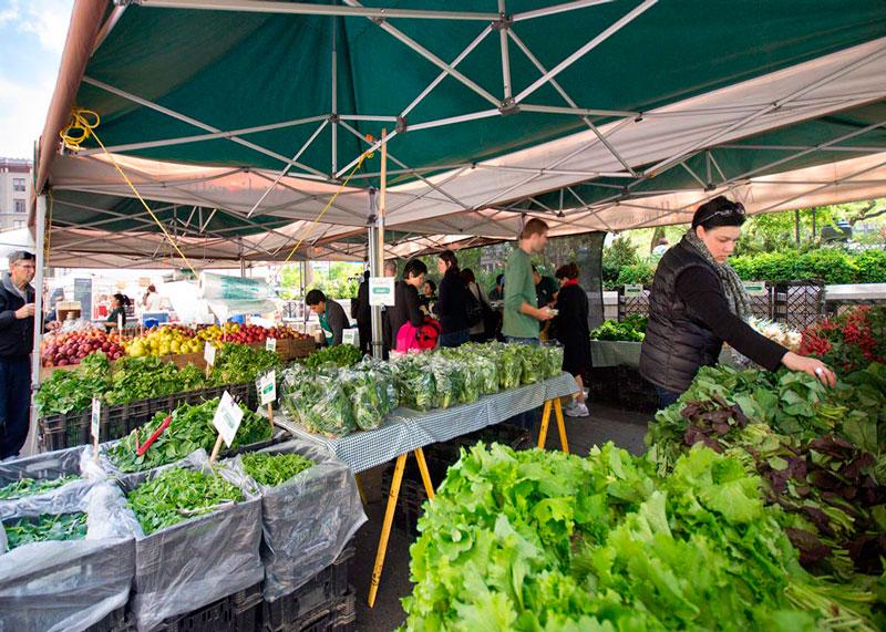 Виды салатов на рынках фото