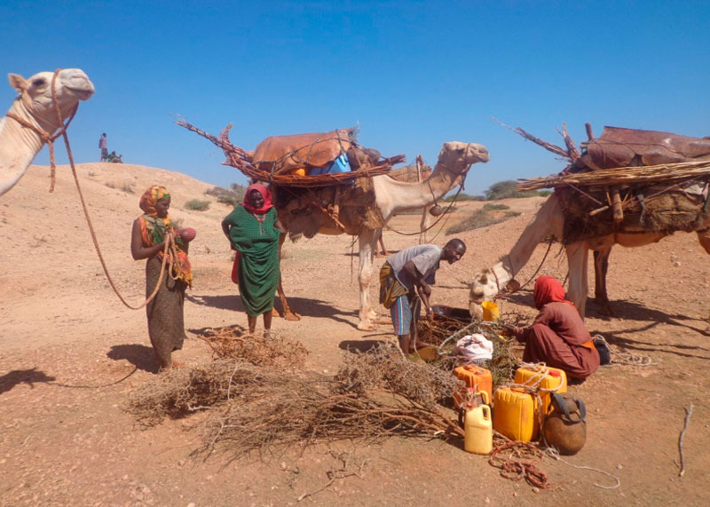 Жители Сомали фото