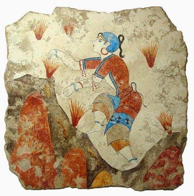Шафран фреска фото