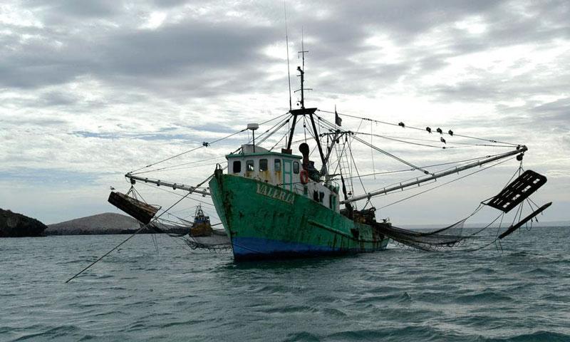 Креветочное судно фото