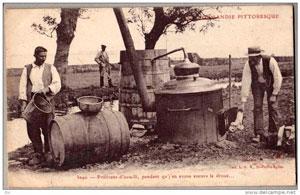Ферма по производству сидра фото