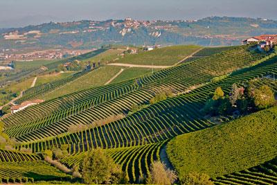 Ланге Италия фото