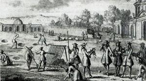 Огород Версаль фото
