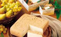 Сыр таледжио фото