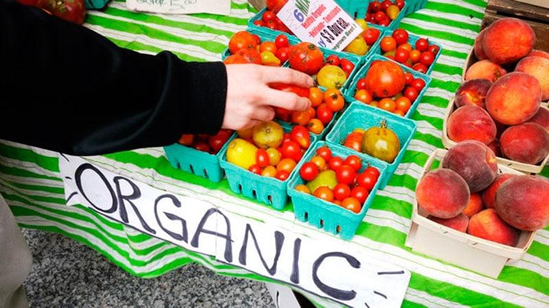 Органические овощи фото