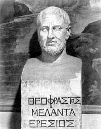 Теофест скульптура фото