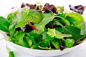 Зеленый салат листья фото