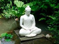 Будда фото