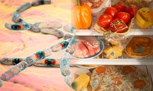 Симптомы пищевого отравления фото