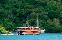 Острова Банда фото