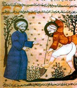 Аль Аваам фото