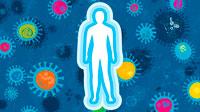 Слабая имунная система фото
