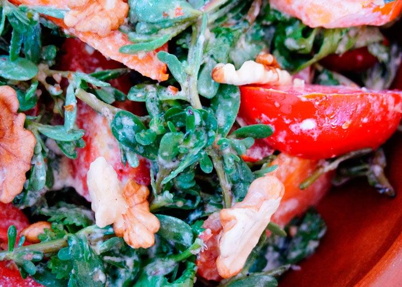 Салат из помидоров и портулака рецепт фото