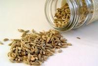 Семена от фенхеля фото