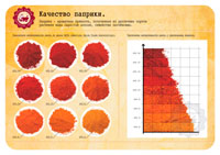 Шкала цветов паприки фото