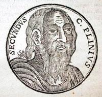 Гай Плиний фото