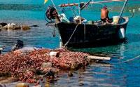Рыбаки Сардиния фото
