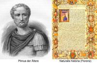 Книга Плиний фото
