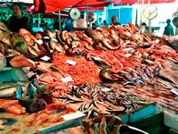 Рыба рынок фото