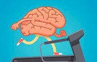 Здоровье мозга фото