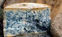 Голубой сыр фото