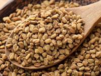 Семена пажитника фото