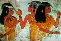 Порей в Древнем Египте фото