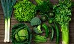Темно-листовая зелень фото