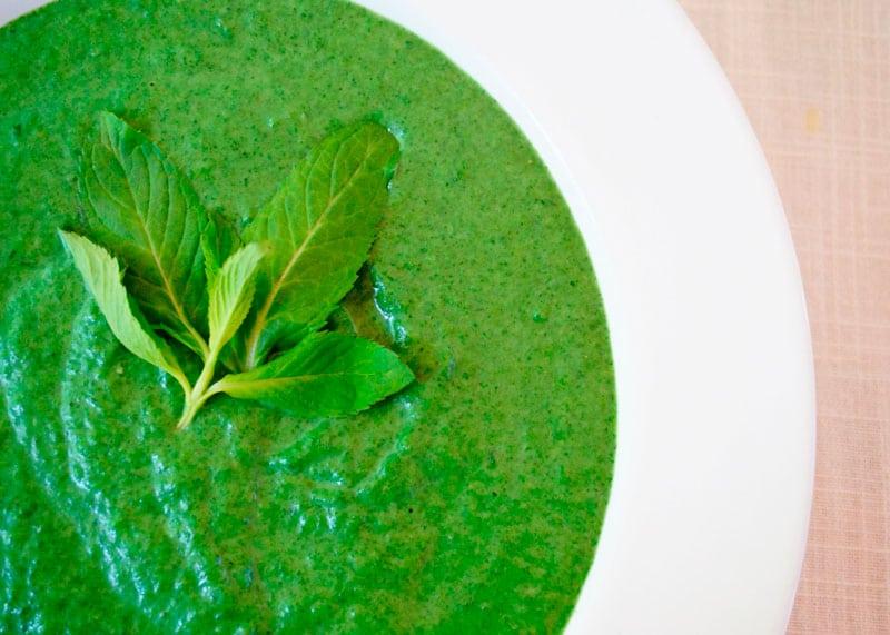 Крем-суп из дикой крапивы фото