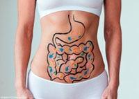 Разнообразие пробиотиков фото