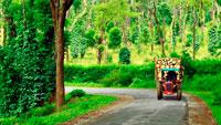 Южная Индия фото