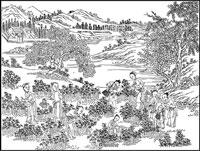 Баклажаны в Древнем Китае фото